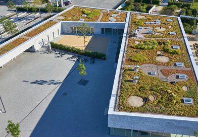 Vorbildlich ist auch das ökologische Profil, welches das EVALASTIC-System unter all den modernen Kunststoff-Dachbahnen so einmalig macht. Foto: alwitra/Sven-Erik Tornow